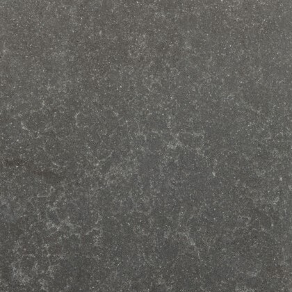 Belgian Grey